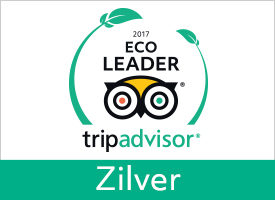 GreenLeader Silver  - Silver level